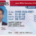 illinois-license